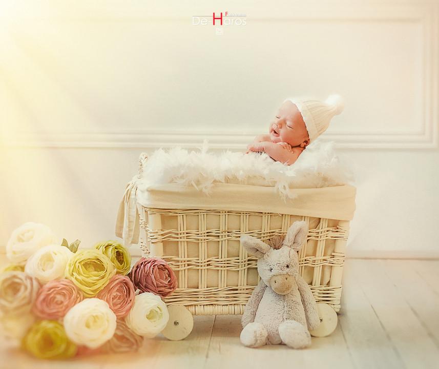 Las mejores fotografías de Recién Nacidos.