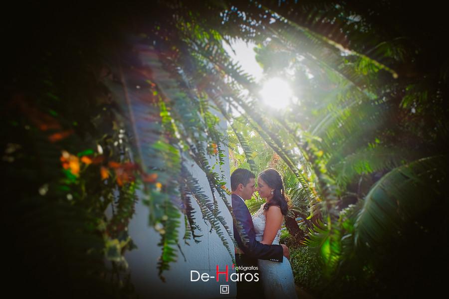 Las mejores fotografías de boda en Marbella